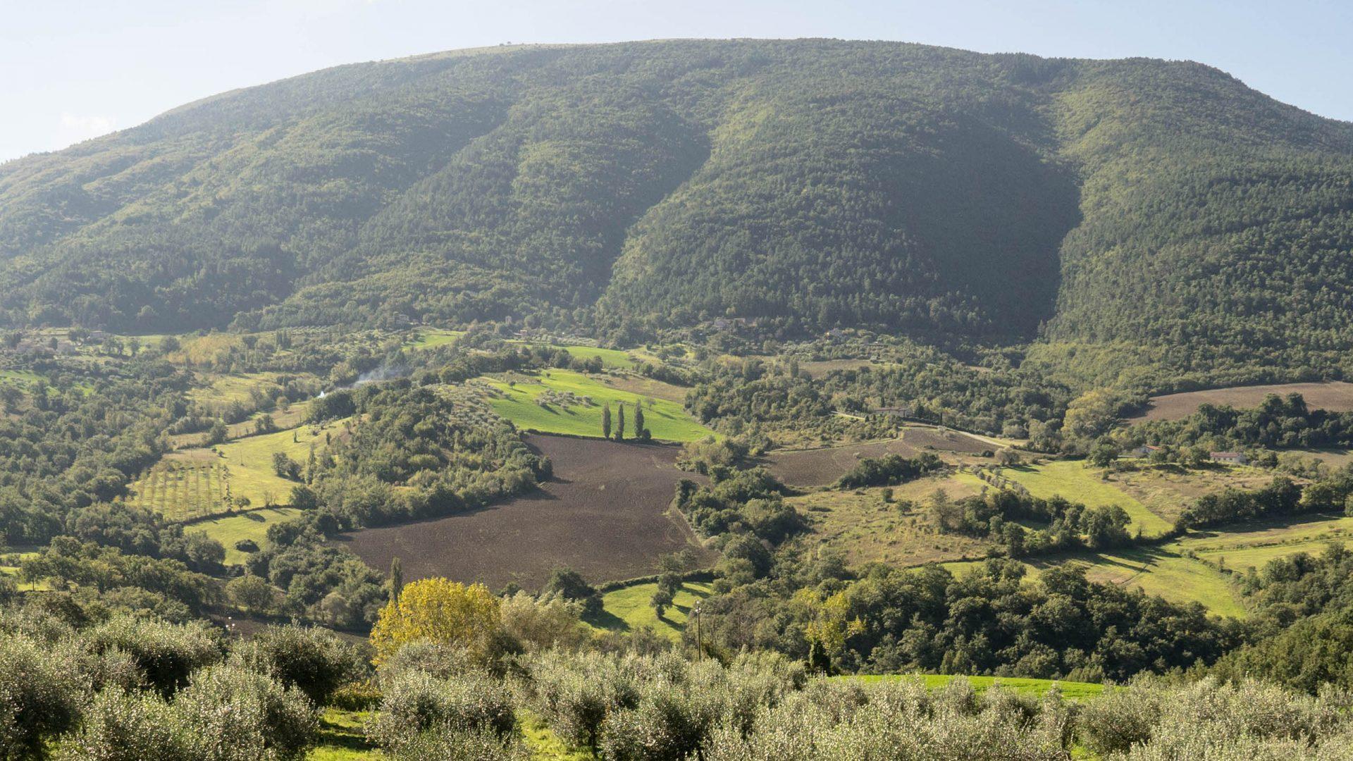 Monte Subasio - Villamena Resort Assisi
